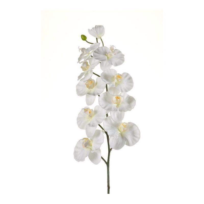 geenKunstbloem Orchidee