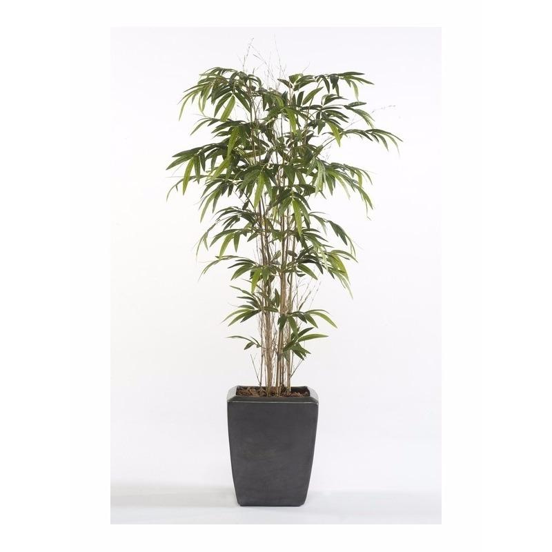 Bellatio flowers & plantsTropische kunstplant Bamboe Promo 150 cm