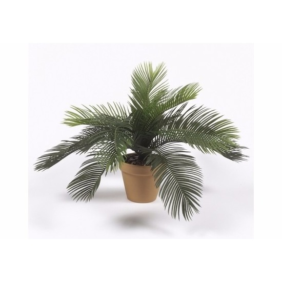 Bellatio flowers & plantsTropische kunstplant Cycas palm 35 cm
